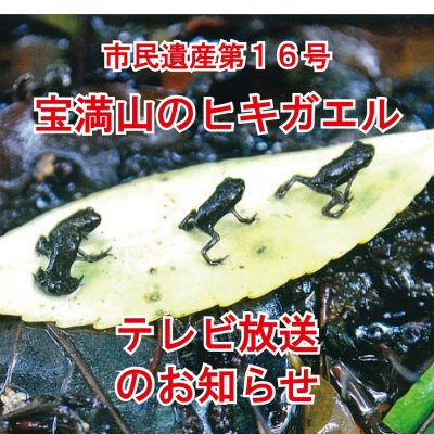 "<span class=""title"">宝満山のヒキガエルがテレビで紹介されます!</span>"